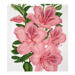 Flower Plant Blossom Bloom Vintage Shower Curtain 66  X 72  (large)  by Sapixe