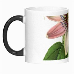 Passion Flower Flower Plant Blossom Morph Mugs by Sapixe