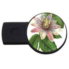 Passion Flower Flower Plant Blossom Usb Flash Drive Round (4 Gb) by Sapixe