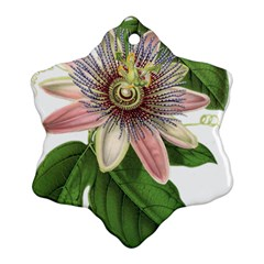 Passion Flower Flower Plant Blossom Ornament (snowflake)