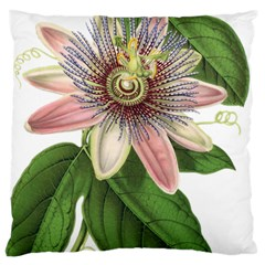 Passion Flower Flower Plant Blossom Large Cushion Case (one Side) by Sapixe