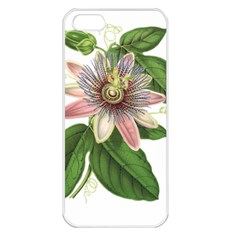 Passion Flower Flower Plant Blossom Apple Iphone 5 Seamless Case (white) by Sapixe