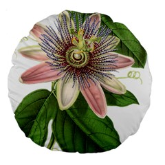 Passion Flower Flower Plant Blossom Large 18  Premium Round Cushions by Sapixe
