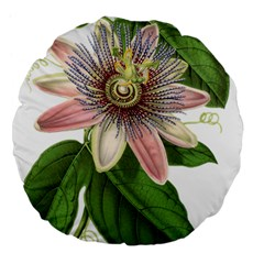 Passion Flower Flower Plant Blossom Large 18  Premium Flano Round Cushions by Sapixe