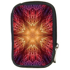 Fractal Abstract Artistic Compact Camera Cases