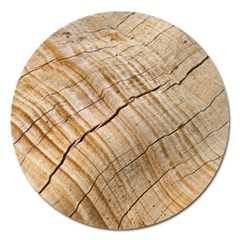 Abstract Brown Tree Timber Pattern Magnet 5  (round)