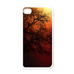 Sunset Silhouette Winter Tree Iphone 4 Case (white)