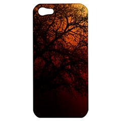 Fall  Apple Iphone 5 Hardshell Case