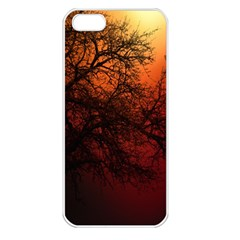 Sunset Silhouette Winter Tree Iphone 5 Seamless Case (white)