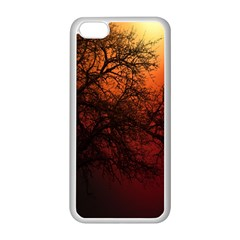 Sunset Silhouette Winter Tree Iphone 5c Seamless Case (white)