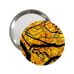 Golden Vein 2 25  Handbag Mirrors