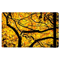Golden Vein Apple Ipad 2 Flip Case