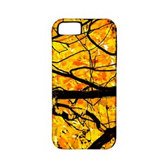Golden Vein Apple Iphone 5 Classic Hardshell Case (pc+silicone)