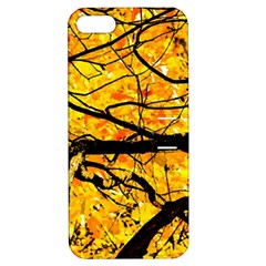 Golden Vein Apple Iphone 5 Hardshell Case With Stand