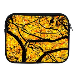 Golden Vein Apple Ipad 2/3/4 Zipper Cases by FunnyCow