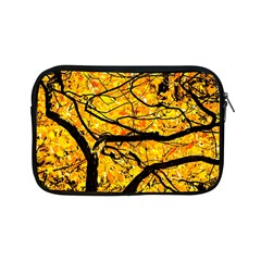 Golden Vein Apple Ipad Mini Zipper Cases