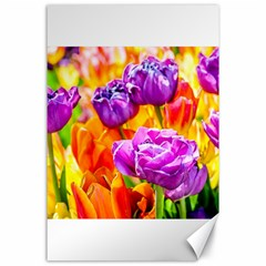 Tulip Flowers Canvas 24  X 36  by FunnyCow