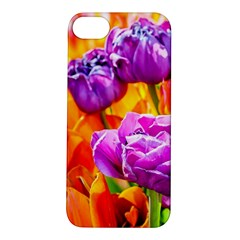 Tulip Flowers Apple Iphone 5s/ Se Hardshell Case by FunnyCow