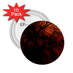 Sunset Silhouette Winter Tree 2 25  Button (10 Pack)