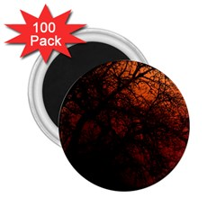 Sunset Silhouette Winter Tree 2 25  Magnet (100 Pack)