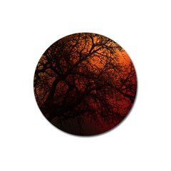 Sunset Silhouette Winter Tree Magnet 3  (round)