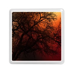Sunset Silhouette Winter Tree Memory Card Reader (square)