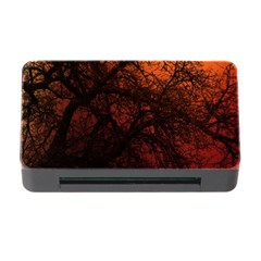 Sunset Silhouette Winter Tree Memory Card Reader With Cf