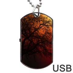 Sunset Silhouette Winter Tree Dog Tag Usb Flash (one Side)