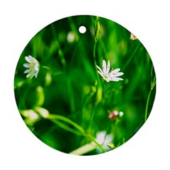 Inside The Grass Ornament (round)