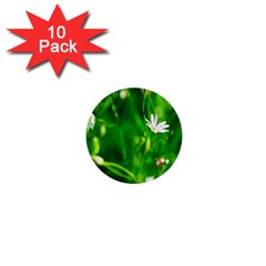 Inside The Grass 1  Mini Buttons (10 Pack)  by FunnyCow