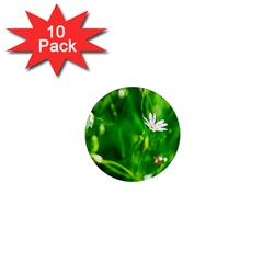 Inside The Grass 1  Mini Magnet (10 Pack)  by FunnyCow
