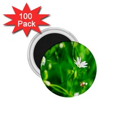 Inside The Grass 1 75  Magnets (100 Pack)  by FunnyCow
