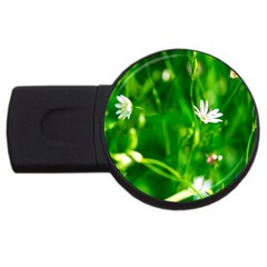 Inside The Grass Usb Flash Drive Round (2 Gb)