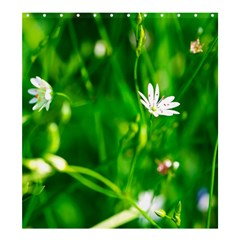 Inside The Grass Shower Curtain 66  X 72  (large)  by FunnyCow