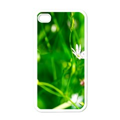 Inside The Grass Apple Iphone 4 Case (white)