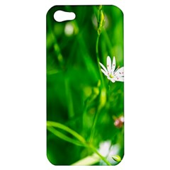 Inside The Grass Apple Iphone 5 Hardshell Case by FunnyCow