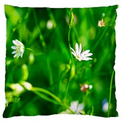 Inside The Grass Large Flano Cushion Case (two Sides) by FunnyCow