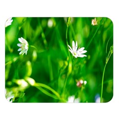 Inside The Grass Double Sided Flano Blanket (large)  by FunnyCow