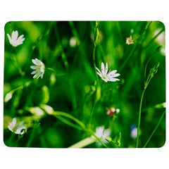 Inside The Grass Jigsaw Puzzle Photo Stand (rectangular) by FunnyCow