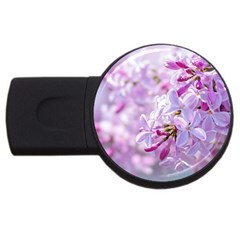 Pink Lilac Flowers Usb Flash Drive Round (4 Gb) by FunnyCow