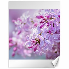Pink Lilac Flowers Canvas 12  X 16   by FunnyCow