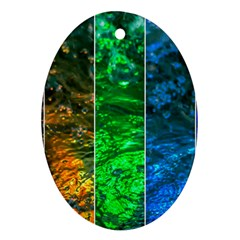 Rainbow Of Water Oval Ornament (two Sides) by FunnyCow