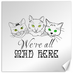 Funny Cats  We Are All Mad Here Canvas 16  X 16   by FunnyCow