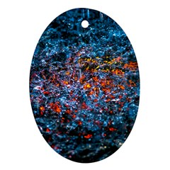 Water Color Orange Ornament (oval) by FunnyCow
