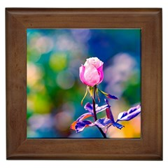 Pink Rose Flower Framed Tiles by FunnyCow