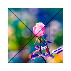 Pink Rose Flower Acrylic Tangram Puzzle (6  X 6 ) by FunnyCow