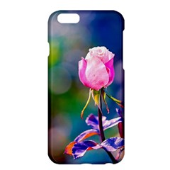 Pink Rose Flower Apple Iphone 6 Plus/6s Plus Hardshell Case by FunnyCow