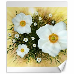Summer Anemone Sylvestris Canvas 20  X 24