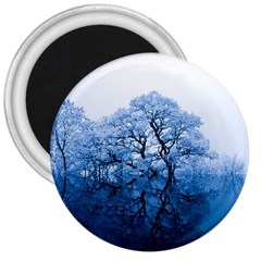 Nature Inspiration Trees Blue 3  Magnets by Nexatart