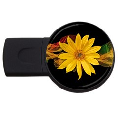Sun Flower Blossom Bloom Particles Usb Flash Drive Round (2 Gb)